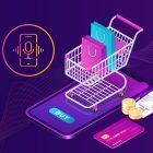 voice commerce statistics you should now
